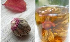 Yasemin çayı ve faydaları