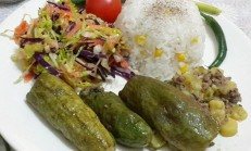 Şıhıl Mahşi / Şeyhıl Mahşe Tarifi Halep Usulü