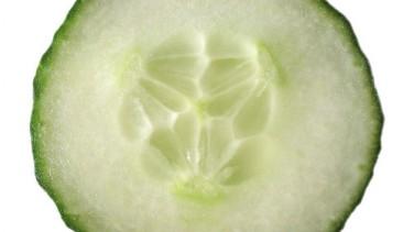 Salatalık ve faydaları