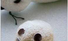 Fok balığı kurabiye