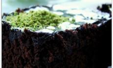 Çikolatasız brovni (brownie) tarifi