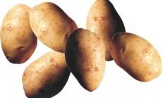 Patatesin faydaları /Prof.Dr. İbrahim Adnan Saraçoğlu
